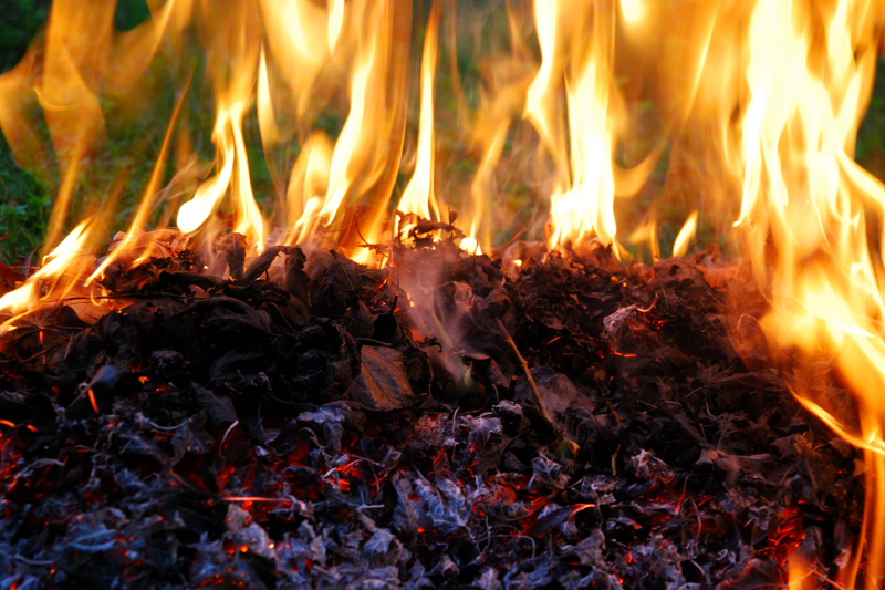Outdoor Burning Notifications   SC State Law requires that you notify the Forestry Commission prior to burning outdoors. In most cases, the law applies to burning leaves, limbs and branches that you clean up from your yard. The notification law does not apply within town or city limits.  SC Forestry, Beaufort County 1-800-895-7062